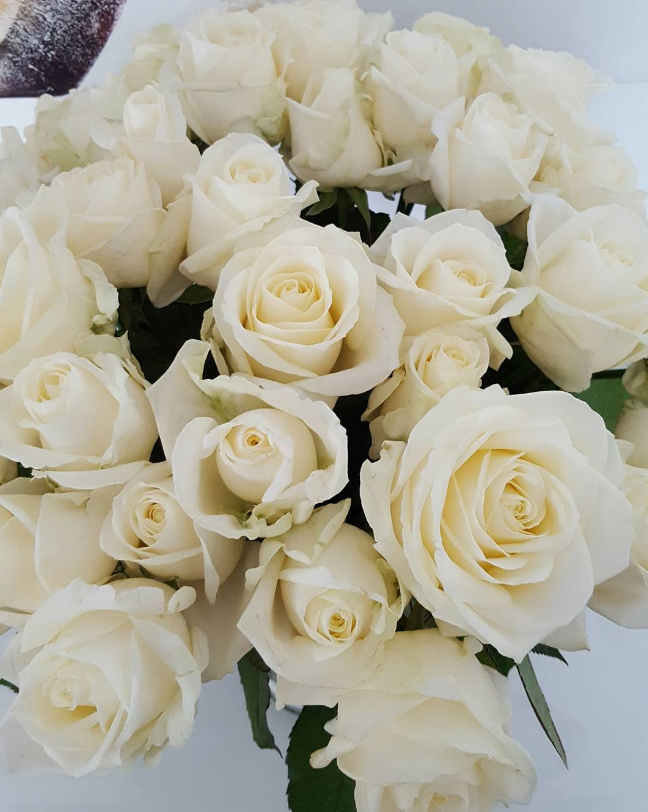 White Rose White Day